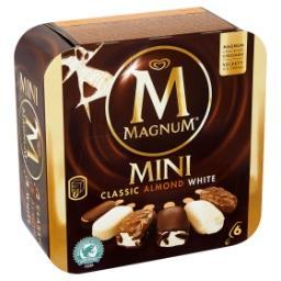 Mini glaces - classic, almond, white
