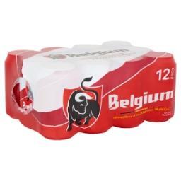 Bière Blonde Maxi Pack