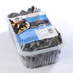 Moules fraîches de hollande - super