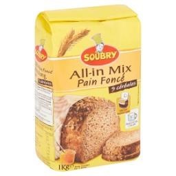 All-in mix pour pain foncé 9 céréales