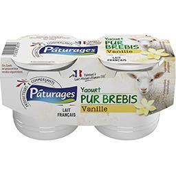 Yaourt pur brebis vanille