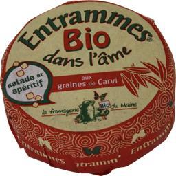 Entrammes bio aux graines de carvi