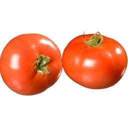 Tomates RONDES A FARCIR