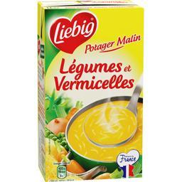 Soupe légumes et vermicelles