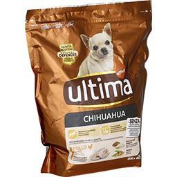 Croquettes Chihuahua