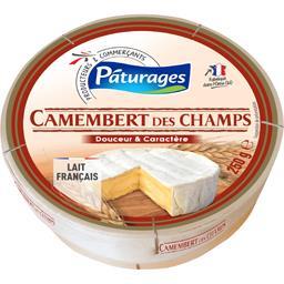 Camembert des champs douceur et caractère