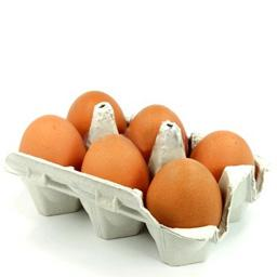 Maxi œuf, dcr, calibre  xl