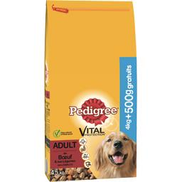Vital Protection - Croquettes Adult au bœuf pour chien