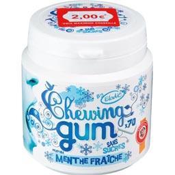 Chewing-gum sans sucres parfum menthe fraîche
