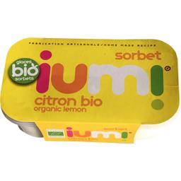 Sorbet citron BIO