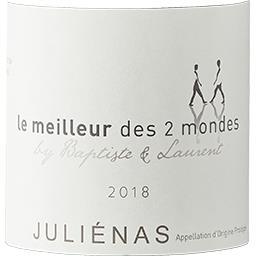 Juliénas Le Meilleur des 2 Mondes vin Rouge 2017