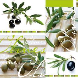 Serviette 33 x 33 cm, Olives