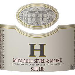 Muscadet Sèvre & Maine sur lie, vin blanc