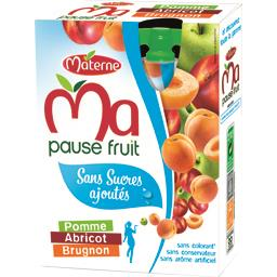 MATERNE Ma pause fruit Gourde pomme abricot brugno