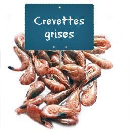 CREVETTES MOYENNES grises cuites
