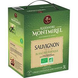 Vin d'Espagne Sauvignon BIO, vin blanc