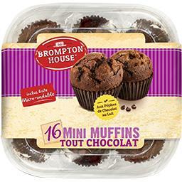 Brompton House Mini Muffins tout chocolat les 16 muffins de 25 g