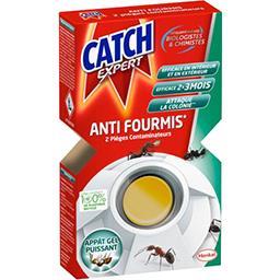 Expert - Piège contaminateur anti-fourmis