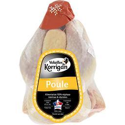 Poule PAC