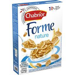 Céréales Forme nature