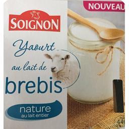 Yaourt au lait de brebis nature