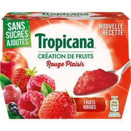 Dessert de fruits Rouge Plaisir sans sucres ajoutés