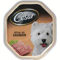 Régal au saumon, aliment complet pour chien adulte