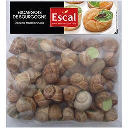 Escargots de Bourgogne recette traditionnelle