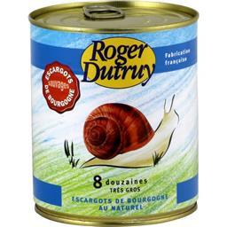 Escargots de Bourgogne au naturel, très gros