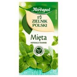 Zielnik Polski Herbatka ziołowa mięta 40 g