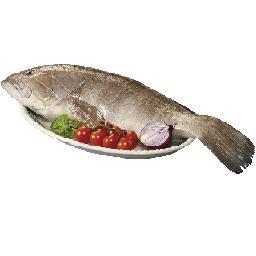 Garoupa (+3kg) inteiro fresco