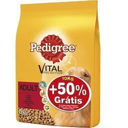 Alimento seco para cão, croquetes de vaca